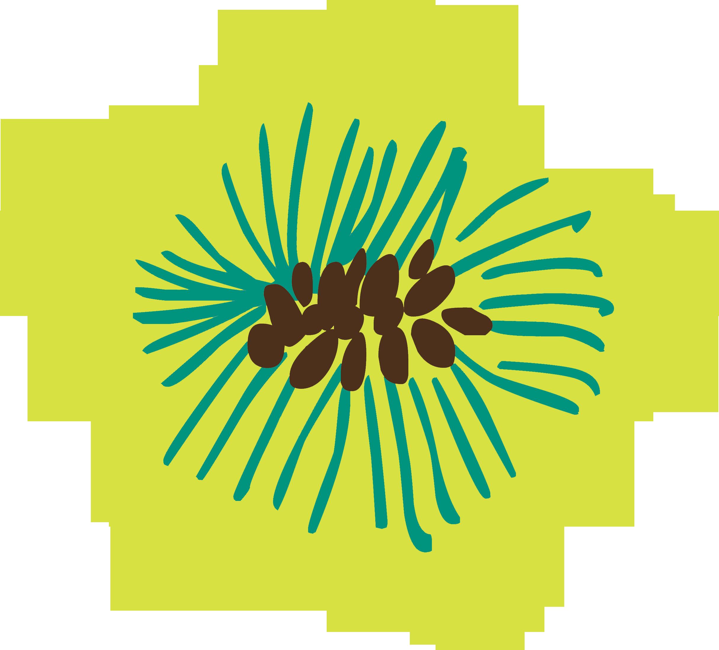 Petite-Fleurs-8 copy